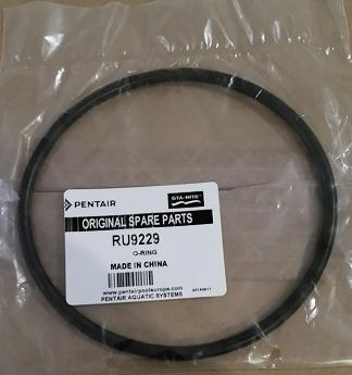 O-Ring für Vorfilterdeckel Duraglas 1 5P2R