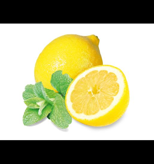 Sauna-Duftkonzentrat Minze-Zitrone
